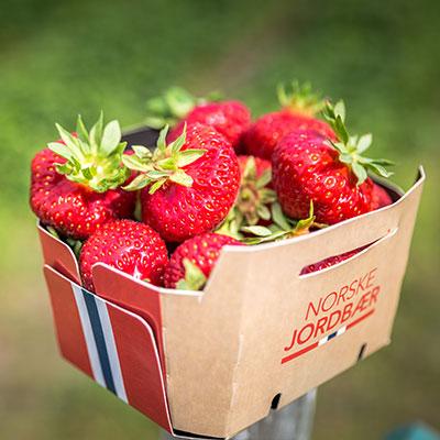 Jordbær 500g fersk