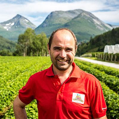 Jordbærprodusent